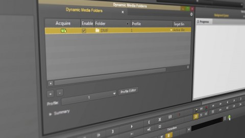 How To Use Dynamic Media Folders in Avid Media Composer Software