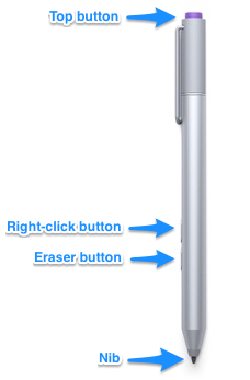 The different buttons and their official names on the Surface Pro 3 pen